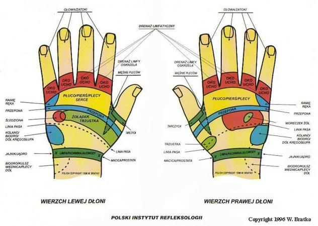 Refleksoterapia - dłonie 1