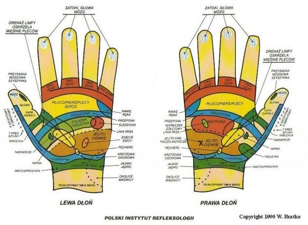Refleksoterapia - dłonie
